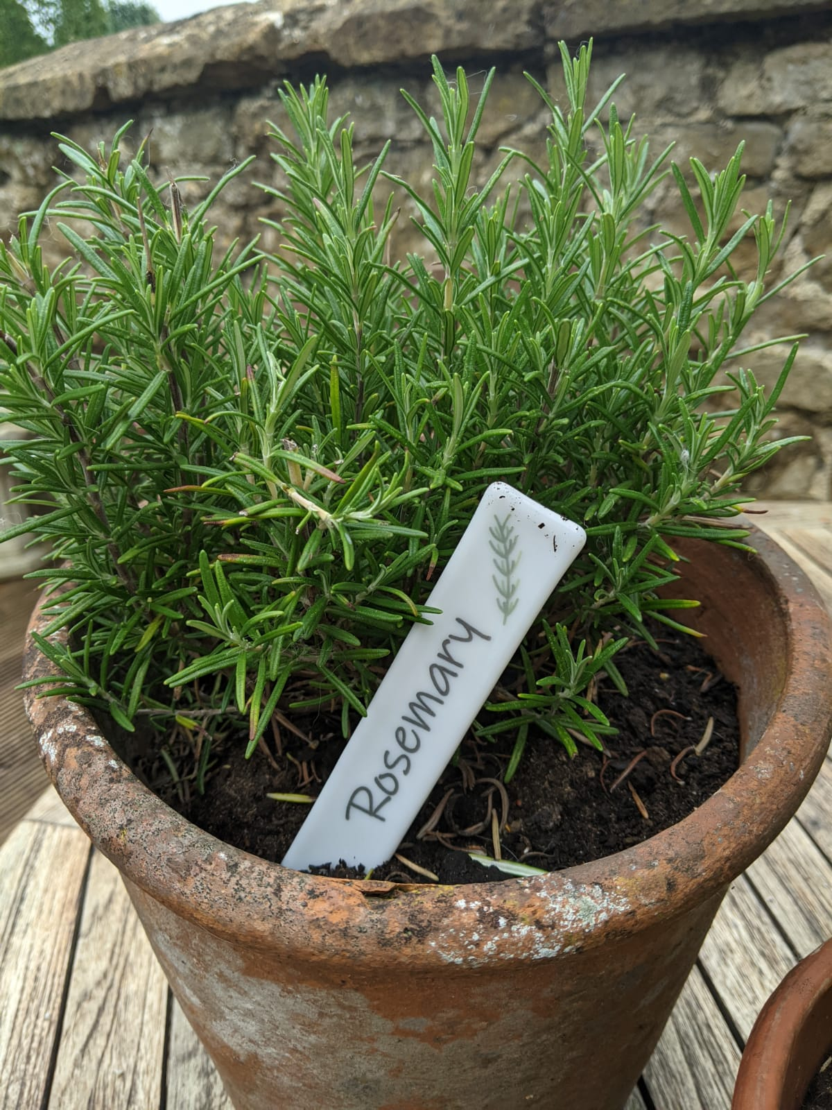 Herb Pot Markers
